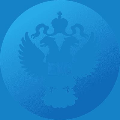 Услуга регистрации в ЕИС